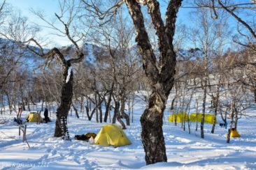Camp in Ganalsky range
